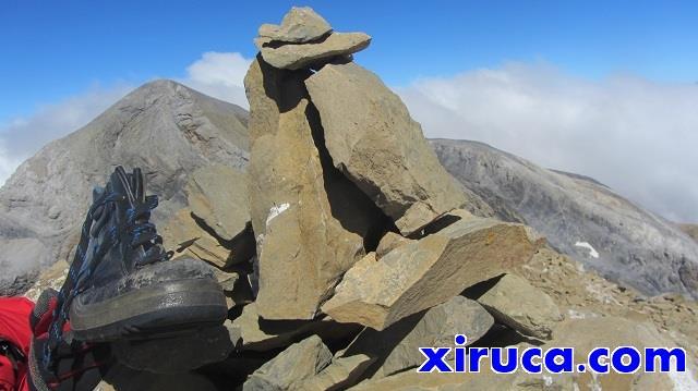 Xiruca en el Pico de Añisclo