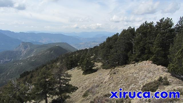 Puig Galliner y Roca de Santaló desde el Cadinell