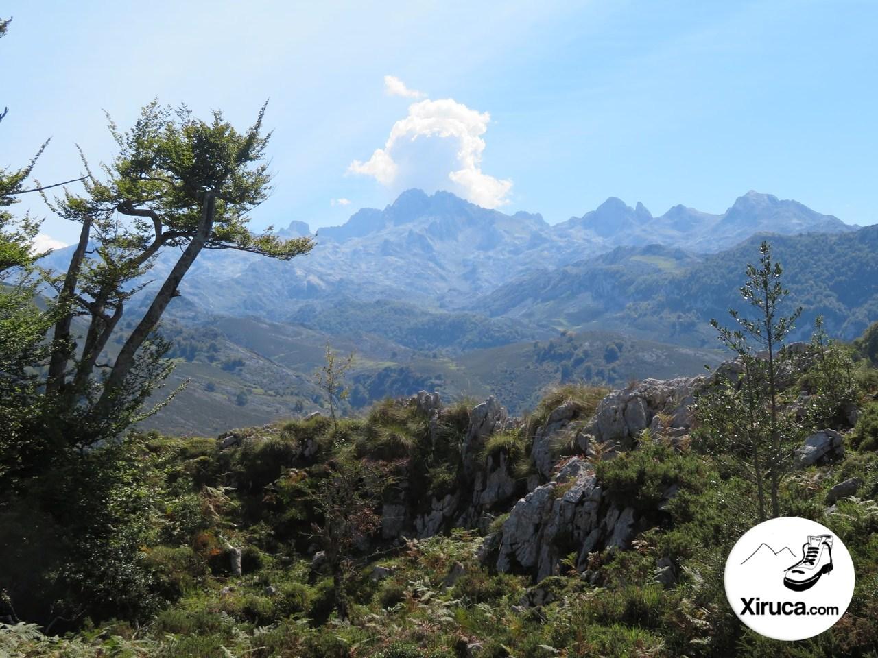 Parte central de Picos de Europa desde Camino de la Reconquista