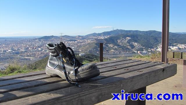 Xiruca en el Puig Castellar