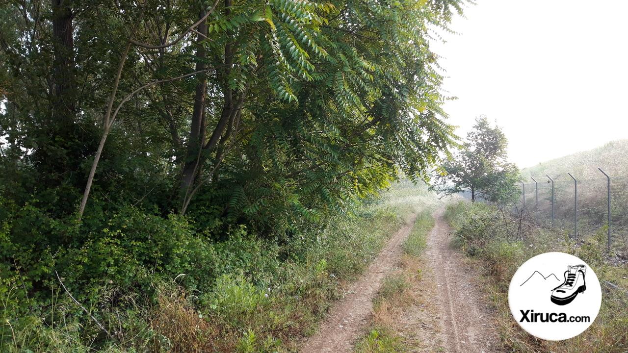 Camino a la Riera de Caldes
