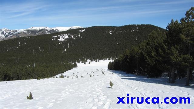 Bajada a Les Collades por antigua pista de esquí