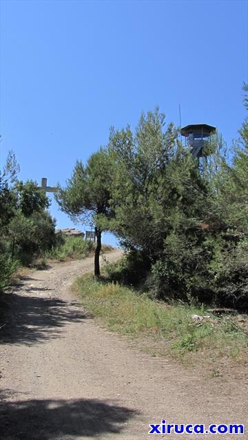 Cima del Puig d'Olorda
