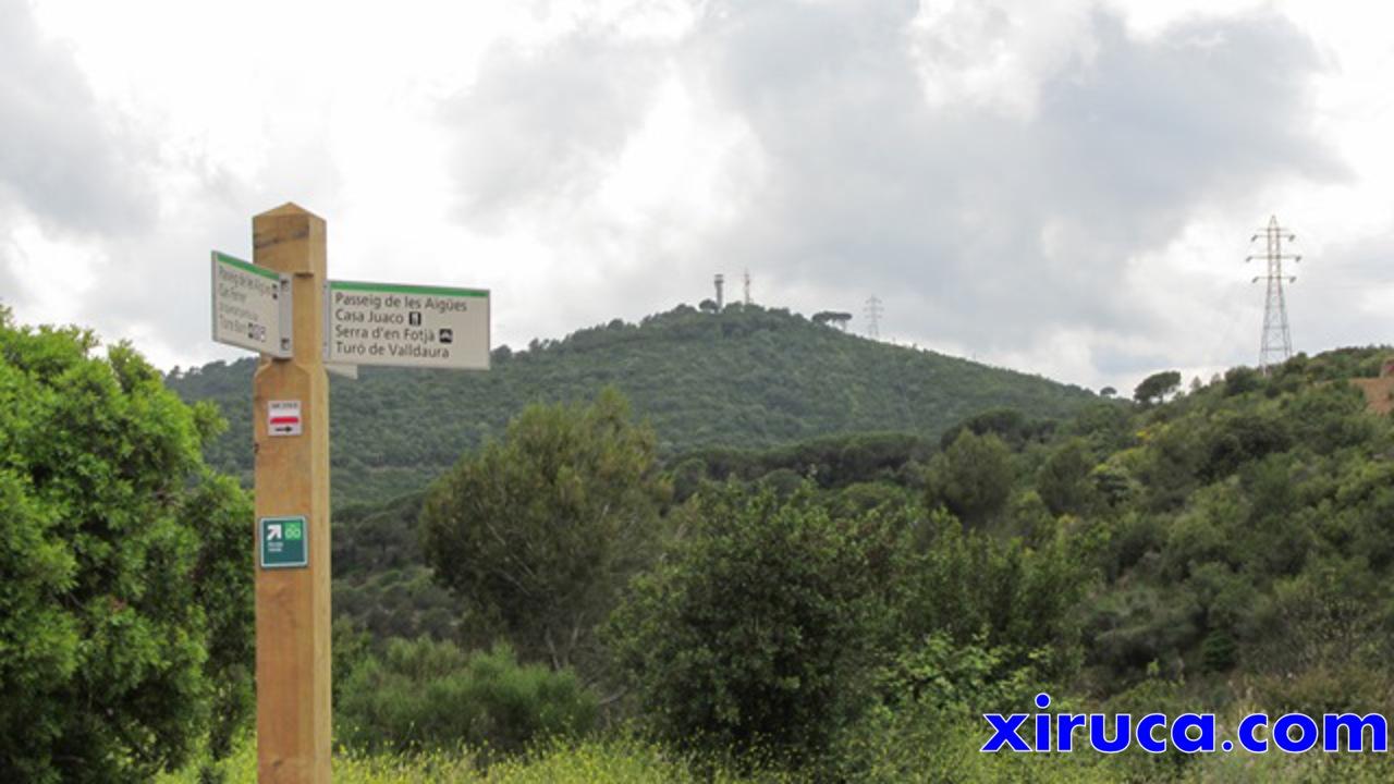 Turó de Valldaura