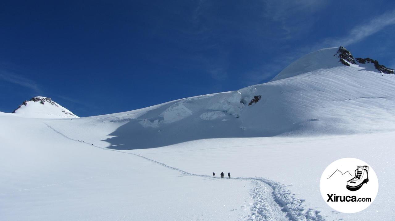 Zumsteinspitze y Signalkuppe