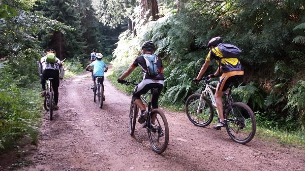Rutas de mountain bike por el montseny