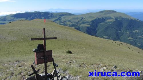 Xiruca en el Puig Cerverís