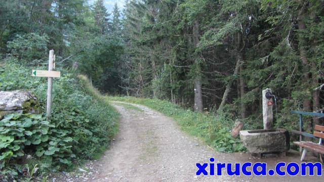 Bifurcación y fuente camino de Armancette