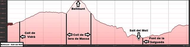 Perfil de la ruta a Bellmunt y al Salt del Molí desde Vidrà