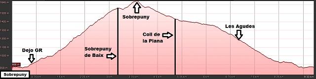 Perfil de la ruta al Sobrepuny