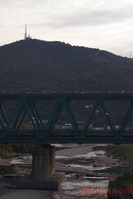 Puente de Montcada